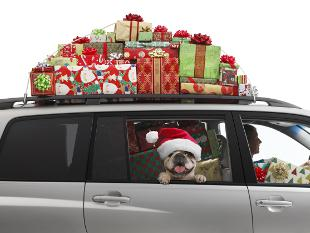 Image of a car with lots of Christmas gifts and a dog.