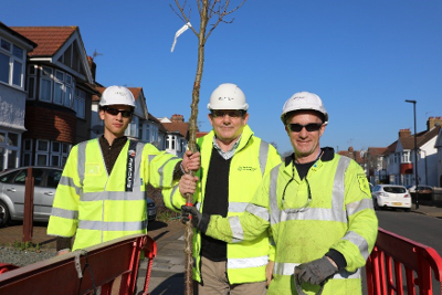 Image of Cllr Steve Curran and Hounslow Highways operatives planting a new tree on Teesdale Gardens, Isleworth.
