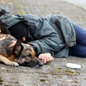 Homeless person sleeps on a street with their dog