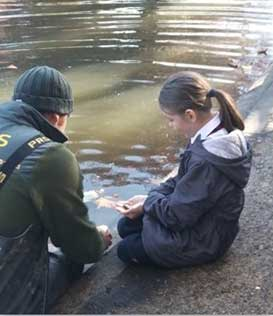 Edward Pauling Primary School Pupil, placing baby carp into Feltham Pond, with Fish expert, Chris Currie.