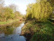 Image of the River Crane
