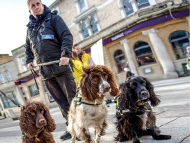 Image of dog handler and sniffer dogs
