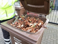 One week to go - save 10 per cent on Hounslow Council's garden waste collection service bin