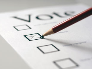Voting on paper - tick box